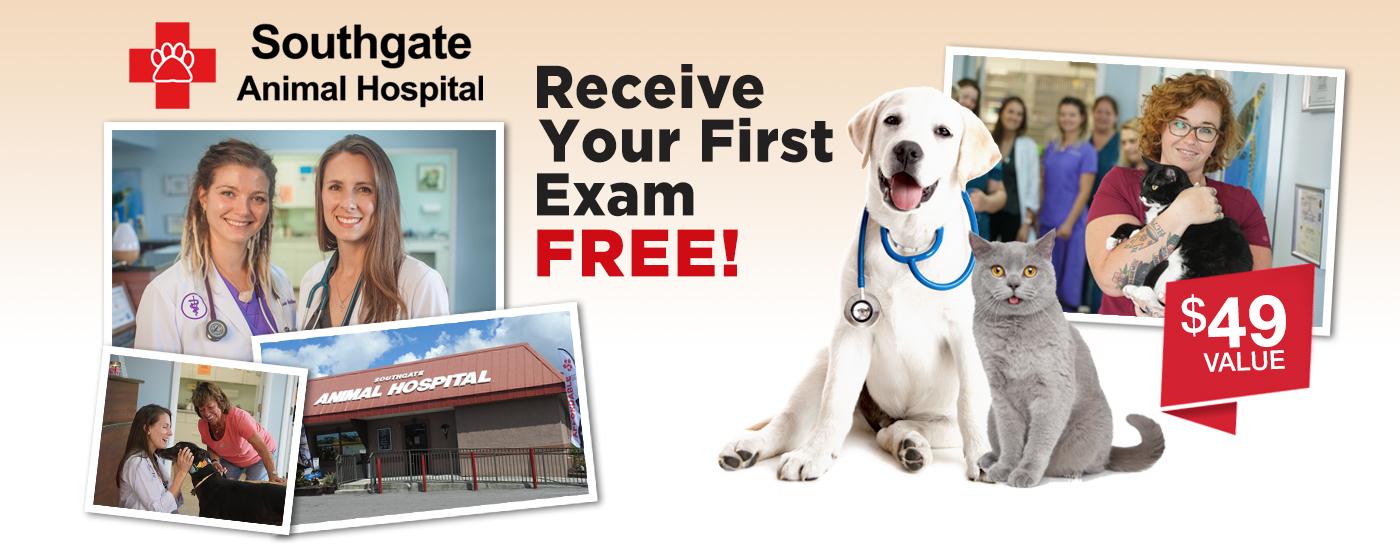 Southgate-Animal-Hospital-Free-First-Exam