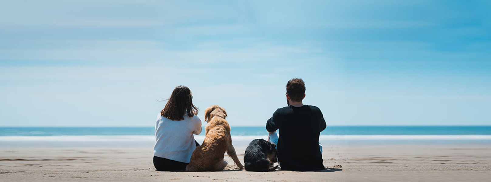couple-and-dog-at-beach-banner