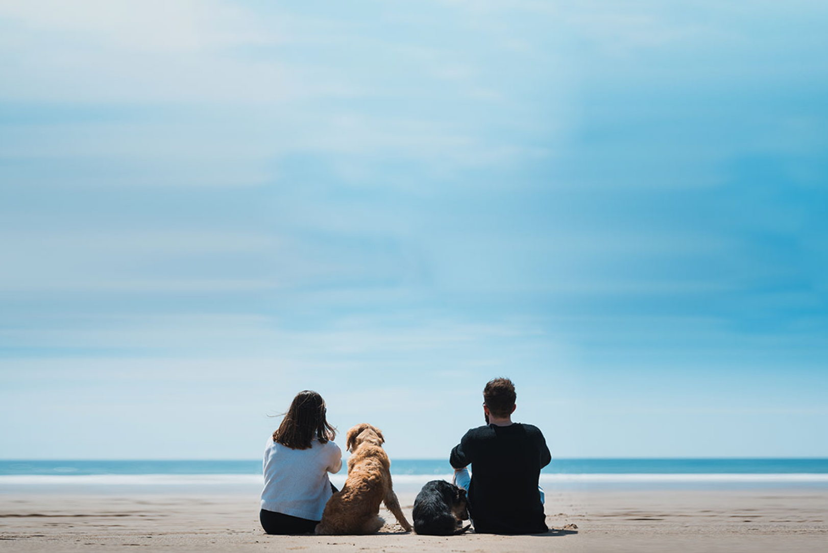 couple-and-dog-at-beach