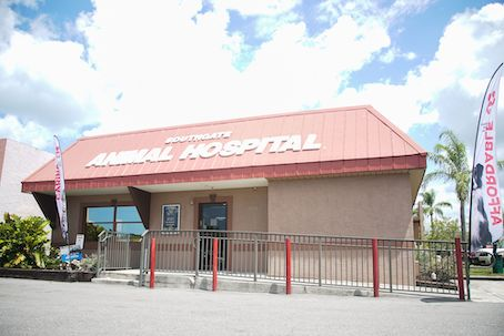 southgate-animal-hospital-building-front