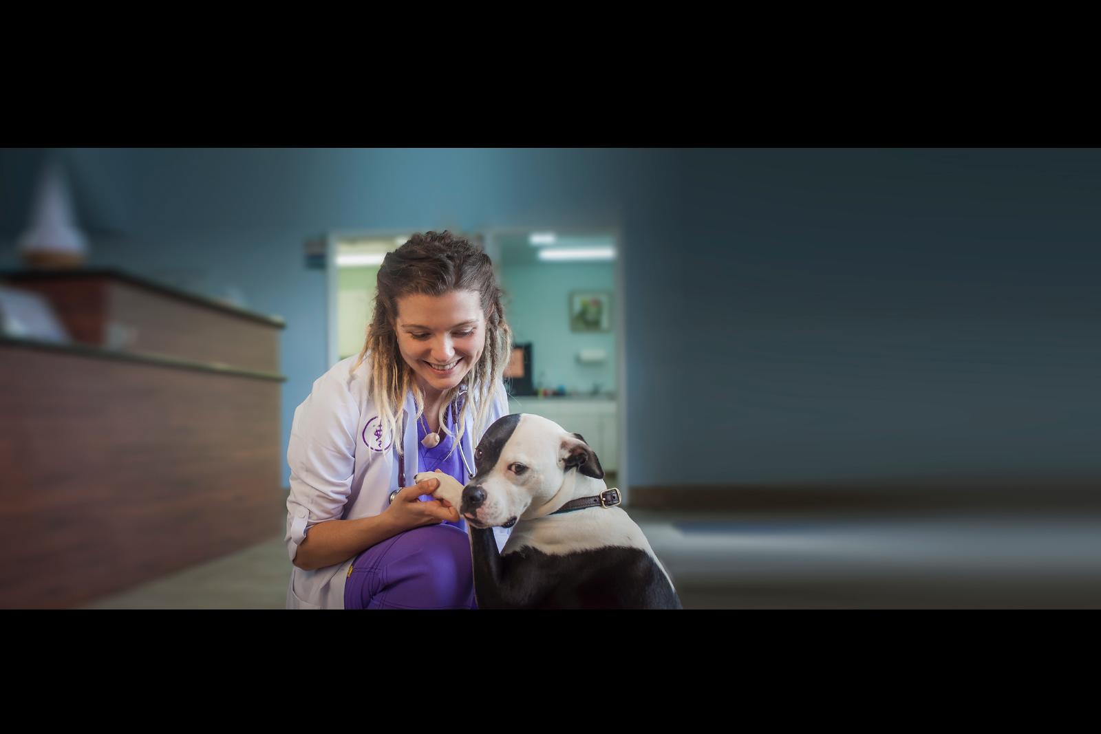 vet-and-dog-slider