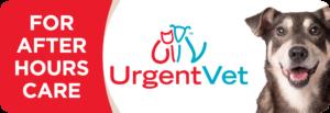 urgentvet website button