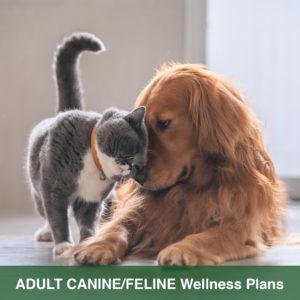 wellness plan dog cat v2 300x300 1