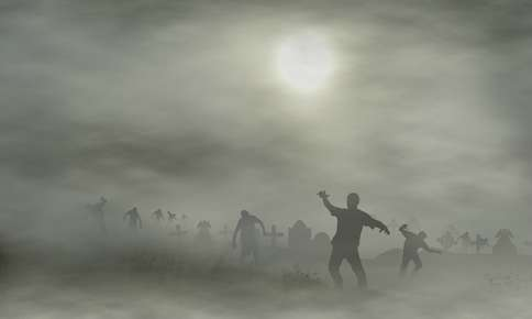 Why A Vet Is Your Best Defense During A Zombie Apocalypse