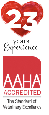 23-Years-Experience-and-AAHA-Accredited
