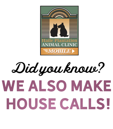 Did-you-know-we-also-make-house-calls