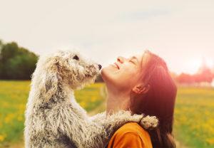 Petly Wellness Plans – FAQs