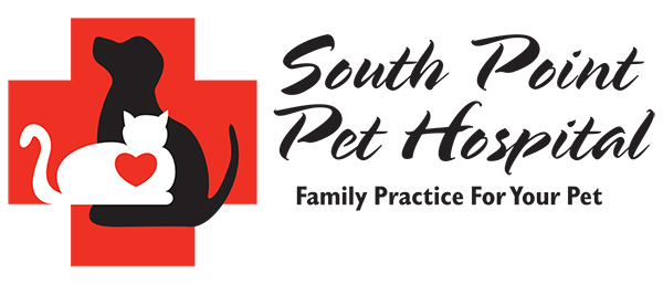 South-Point-Pet-Hospital-SMALL